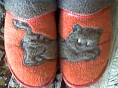 (116/66) Nuevo Meme: Mis zapatillas.